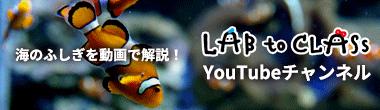 海のふしぎを動画で解説!LAB to CLASS YouTubeチャンネル