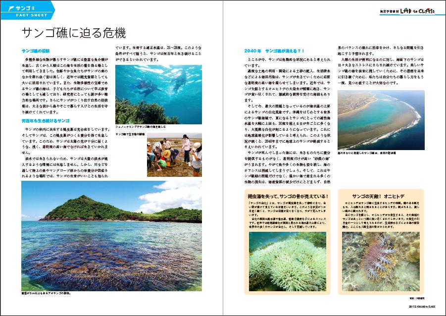 <サンゴⅡ サンゴ礁に迫る危機>