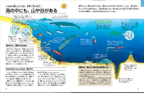 資料:「海の中にも、山や谷がある」(偕成社『クジラとイルカ 海も地球も大研究』より)