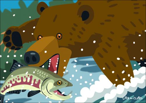クマの食物連鎖カード