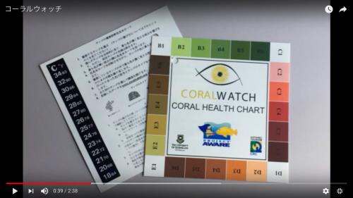 3.色見本カード(「コーラルウォッチ」カード)の使い方、データの記録の仕方を説明します。