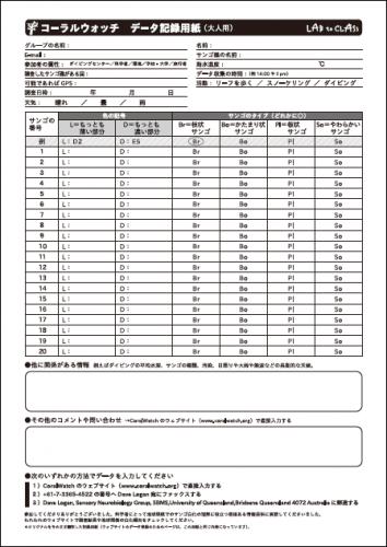 参加者用データ記録用紙(大人用)