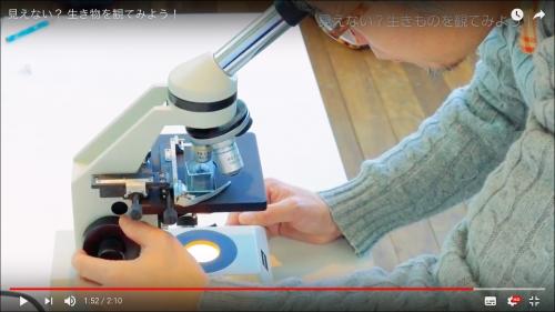 4.光学顕微鏡で細部を観察します。プランクトンをつぶさないようにホールスライドを使い、体の細部や動きの特徴などを観察します。