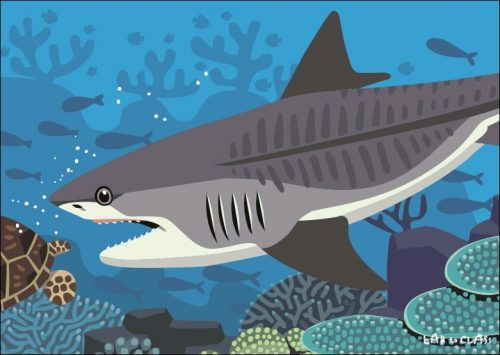 イタチザメの食物連鎖カード