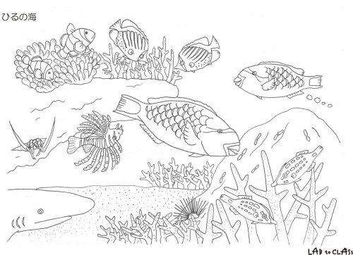 ぬり絵シート「ひるの海」