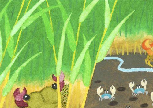 干潟のジグソーパズルのイラスト(全32枚)