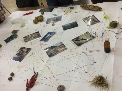 4.人間が写っている写真や海の生物の写真を加えて、関連性を考え、最後に海の漂着ごみについて解説をします。