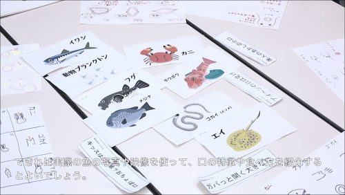 3.魚の口の絵を『お魚のごはん』カードの周りに並べ、絵についてのコメントを述べます。その後、実際に食べている魚のカードを提示します。