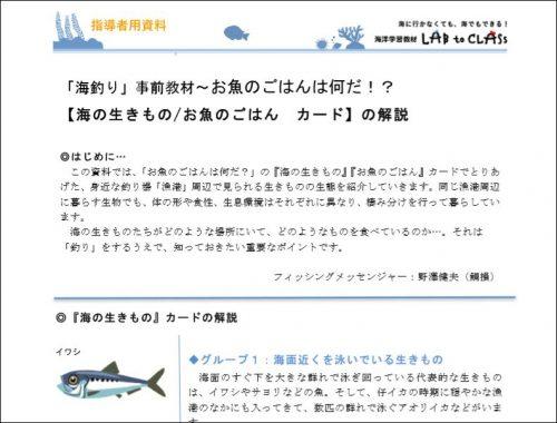 指導者資料『お魚のごはん・海の生きもの』カード解説