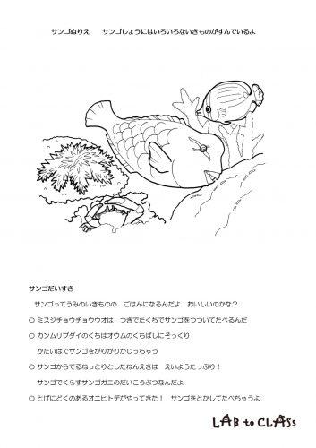 ぬりえシート「サンゴだいすき」